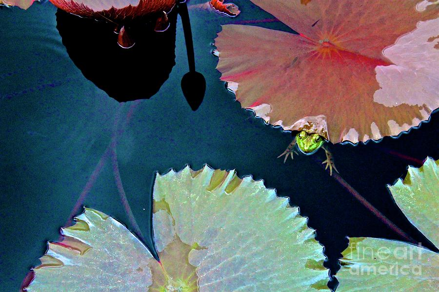 Atlanta Botanical Garden Photograph - 01142017102 by Debbie L Foreman