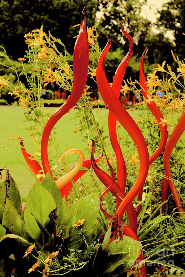 Atlanta Botanical Garden Photograph - 01142017104 by Debbie L Foreman