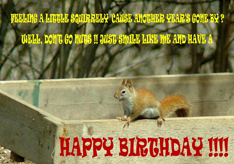 Birthday Photograph - 032309-68  Birthday Card by Mike Davis