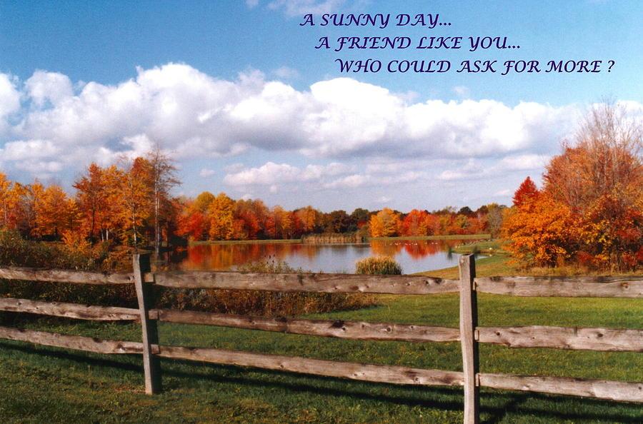 Autumn Photograph - 070506-44a  Friendship Card by Mike Davis