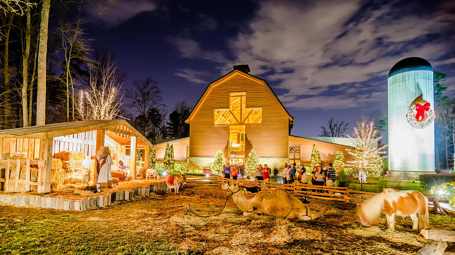 animals photograph christmas celebration at billy graham library by alex grichenko