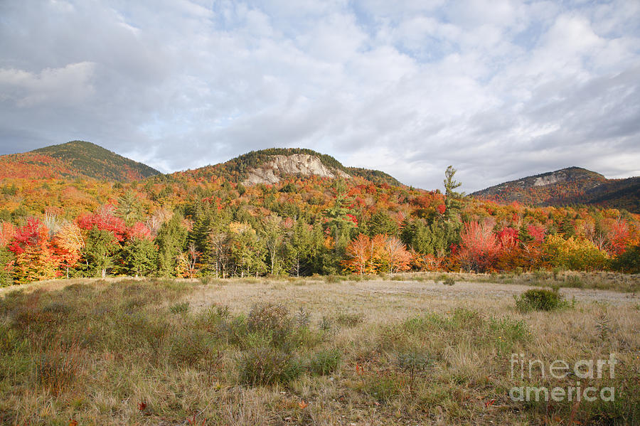 White Mountain National Forest Photograph -  Kancamagus Highway - White Mountains New Hampshire Usa by Erin Paul Donovan