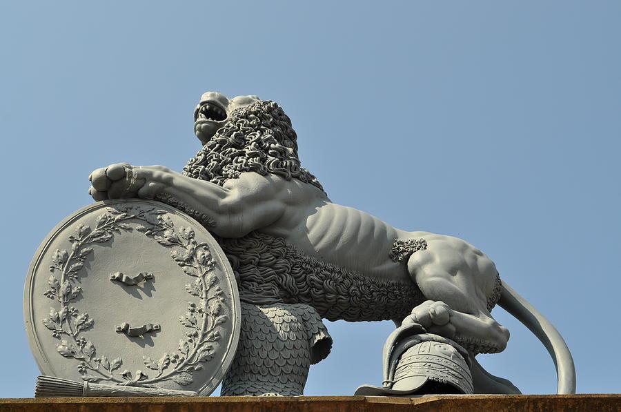 Lion Photograph - 22 by Sfinga Sfinga