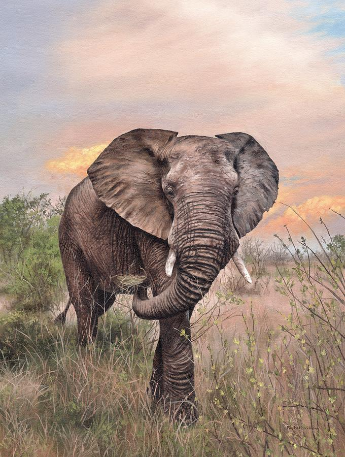 African Elephant Painting by Rachel Stribbling
