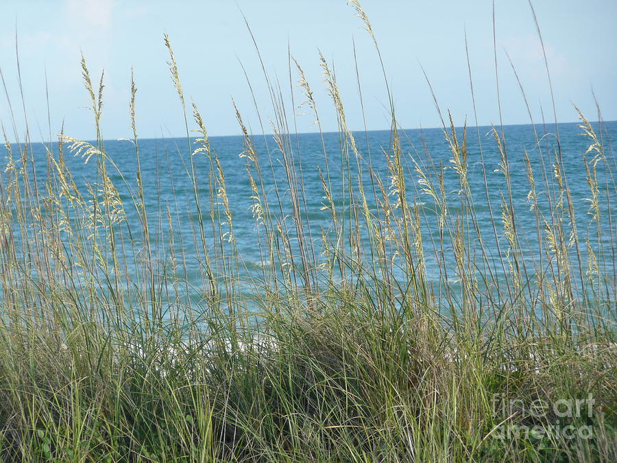 Beach Photograph - Afternoon At The Beach by Barb Montanye Meseroll