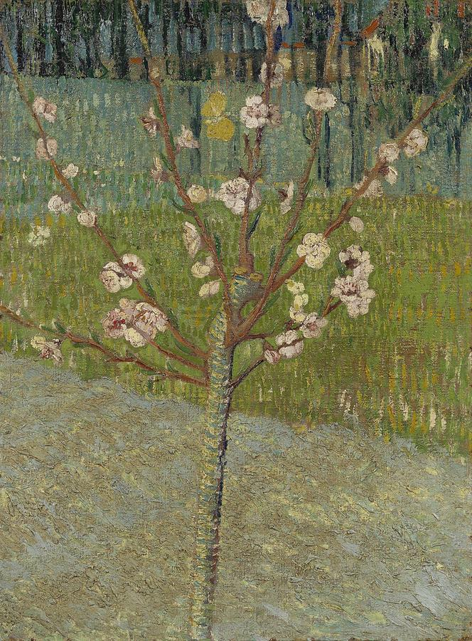 Nature Painting - Almond Tree In Blossom Arles, April 1888 Vincent Van Gogh 1853 - 1890 by Artistic Panda