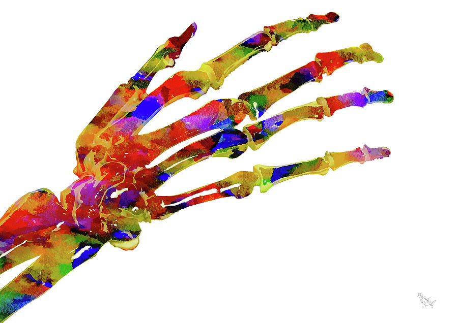 Anatomical Hand Mixed Media by Ann Leech