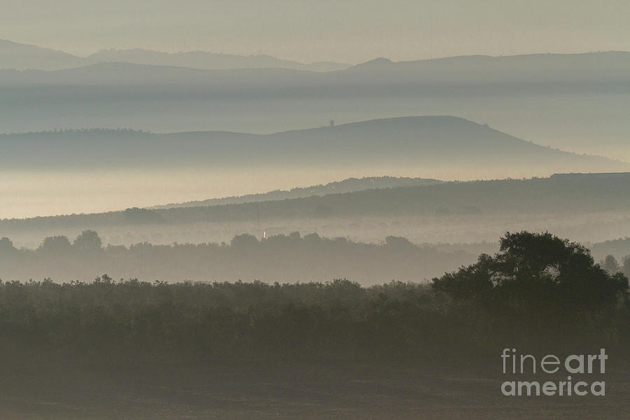 Andalusian Hills In Fog Photograph