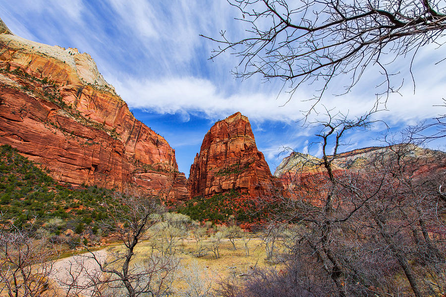 Angels Landing Photograph - Angels Landing by Chad Dutson