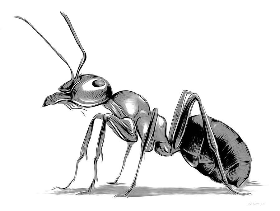 Ant Digital Art