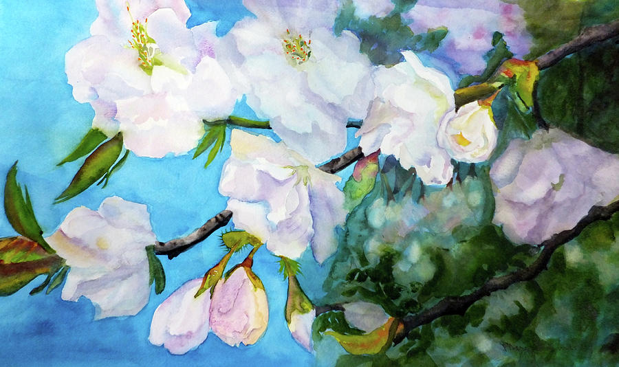 Apple Blossoms by MARY GORMAN