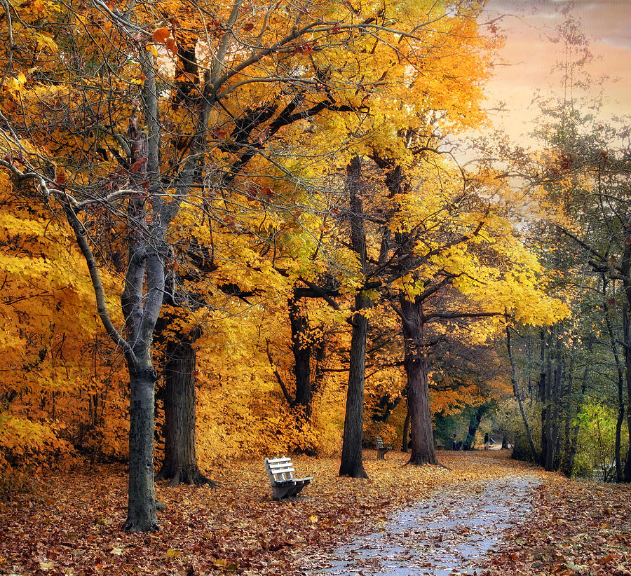 Autumn Photograph - Autumn By The River by Jessica Jenney