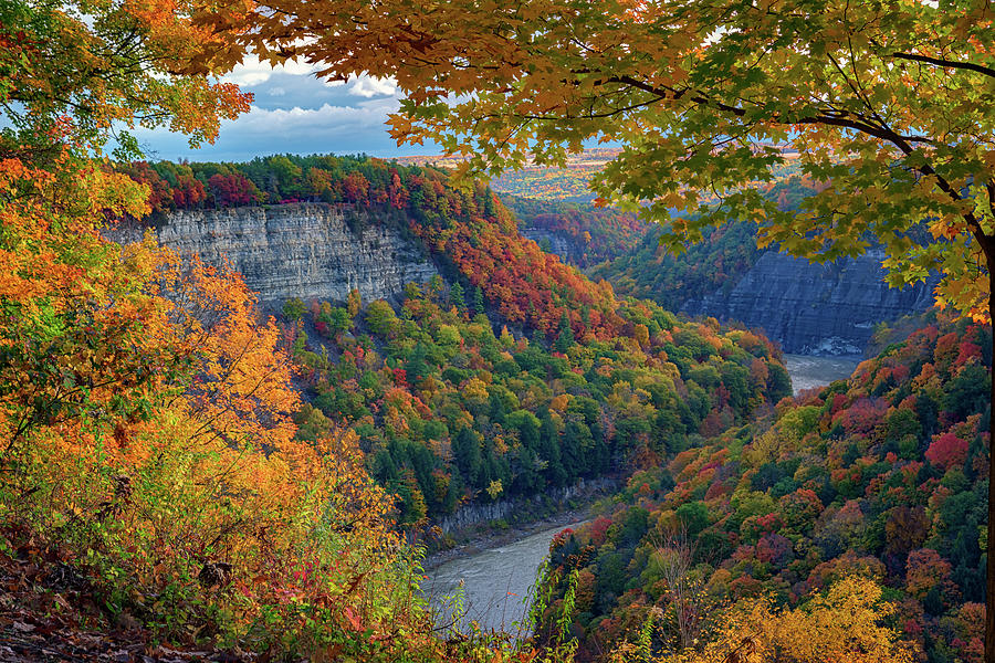 Letchworth State Park Photograph - Autumn On The Genesee II by Rick Berk