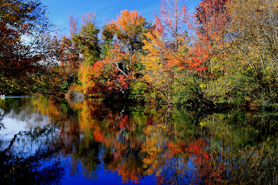 Fall Photograph - Autumn Pond by Gary Bydlo