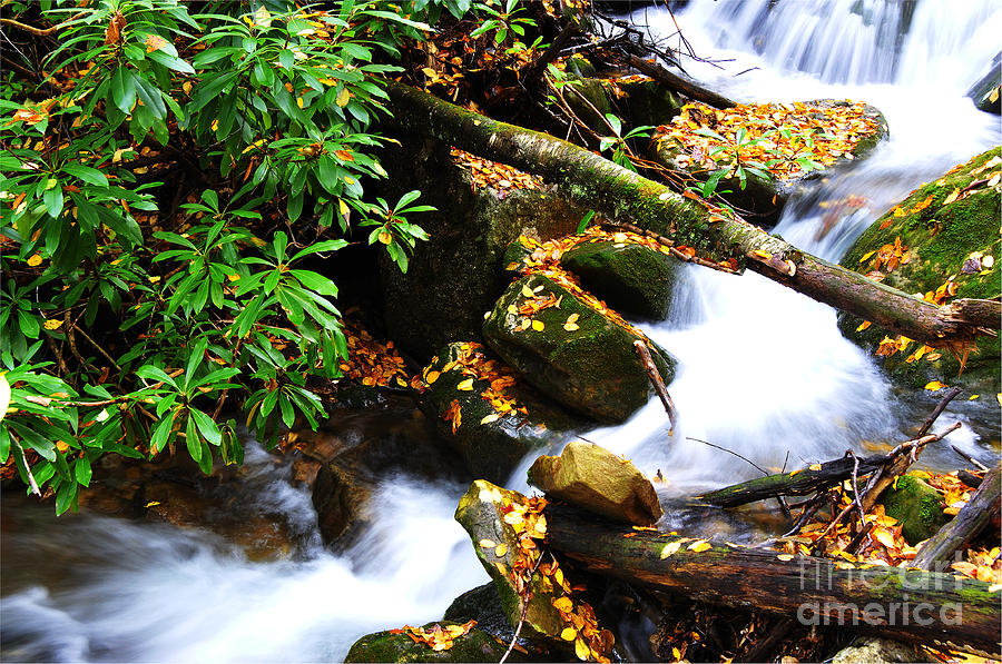 Rushing Mountain Stream Photograph - Autumn Serenity by Thomas R Fletcher