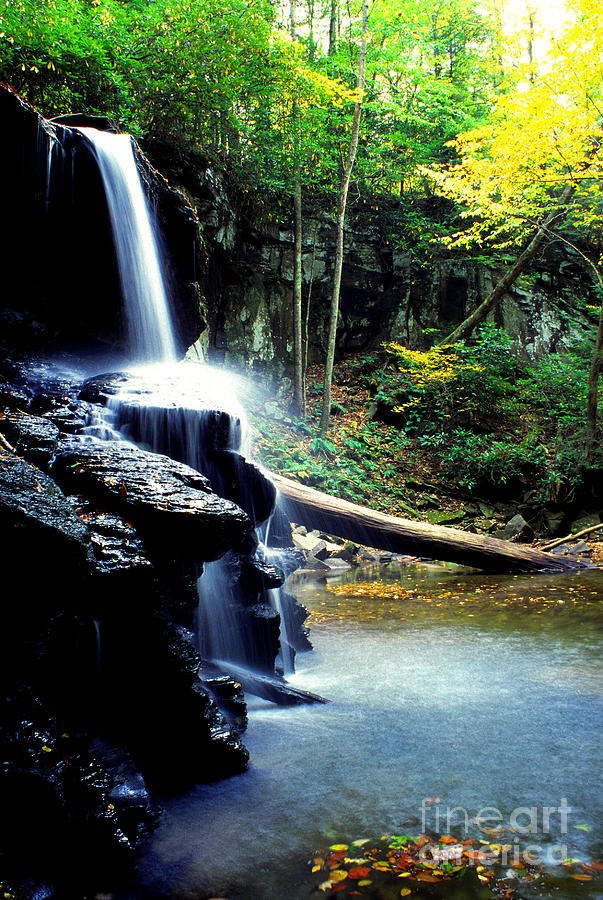 Holly River State Park Photograph - Autumn Upper Falls Holly River by Thomas R Fletcher