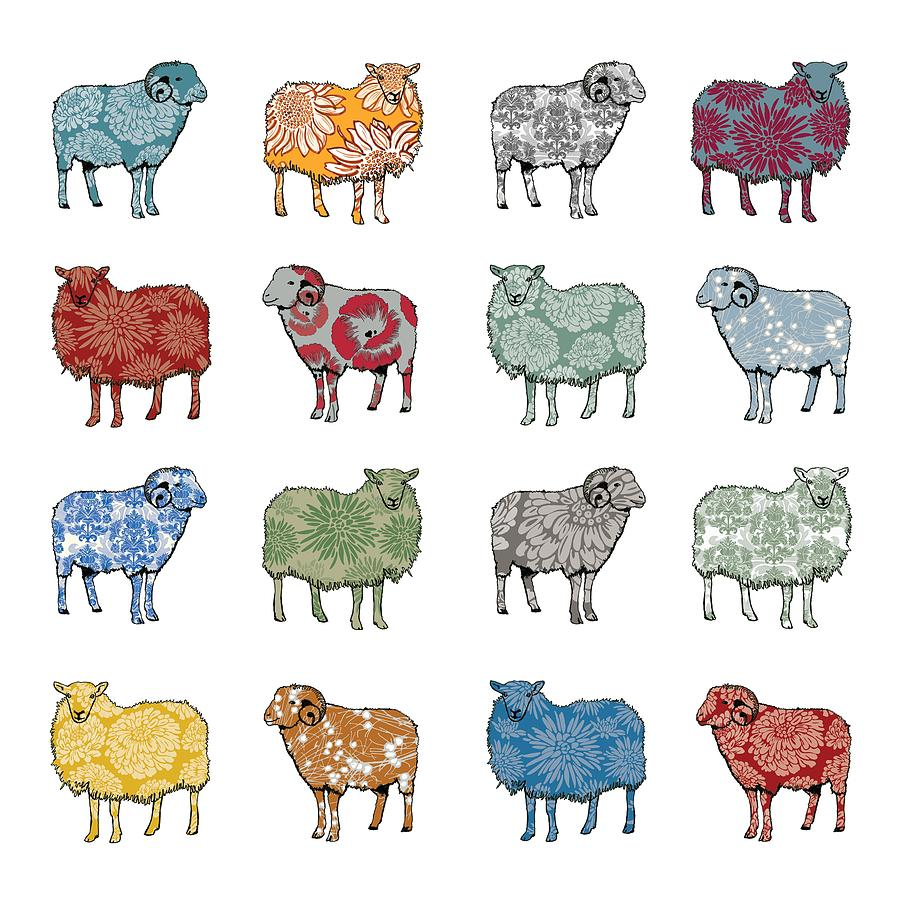Sheep Digital Art - Baa Humbug by Sarah Hough
