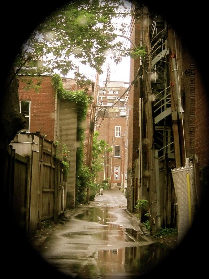 Fences Photograph - Back Lanes by Michael Litvack