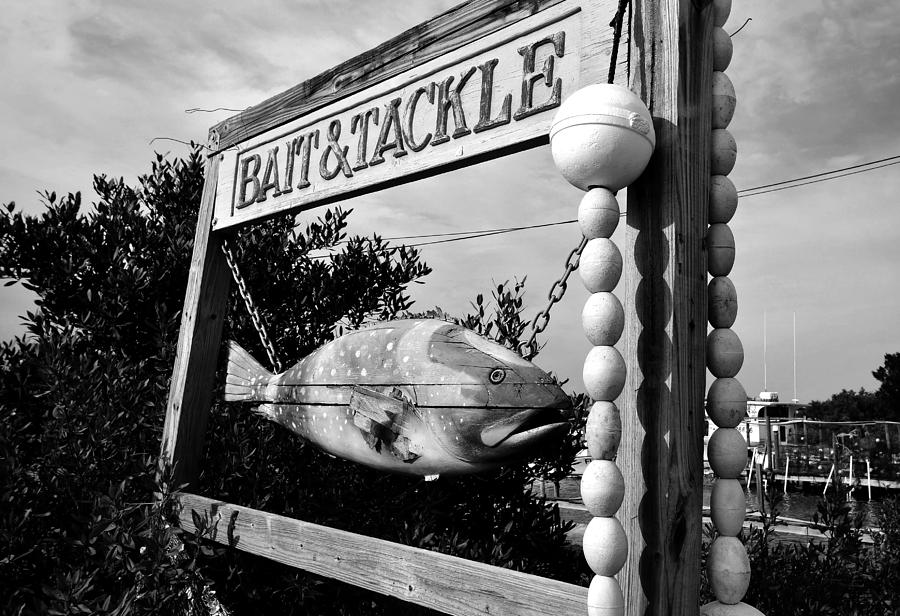Bait And Tackle Shop Photograph - Bait And Tackle by David Lee Thompson