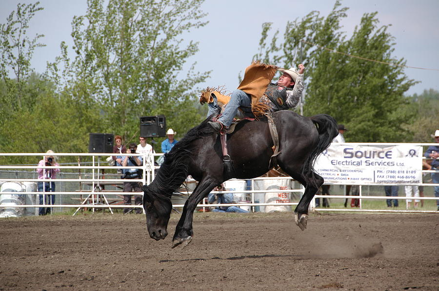 Rodeo Photograph - Bareback by Marj Beach