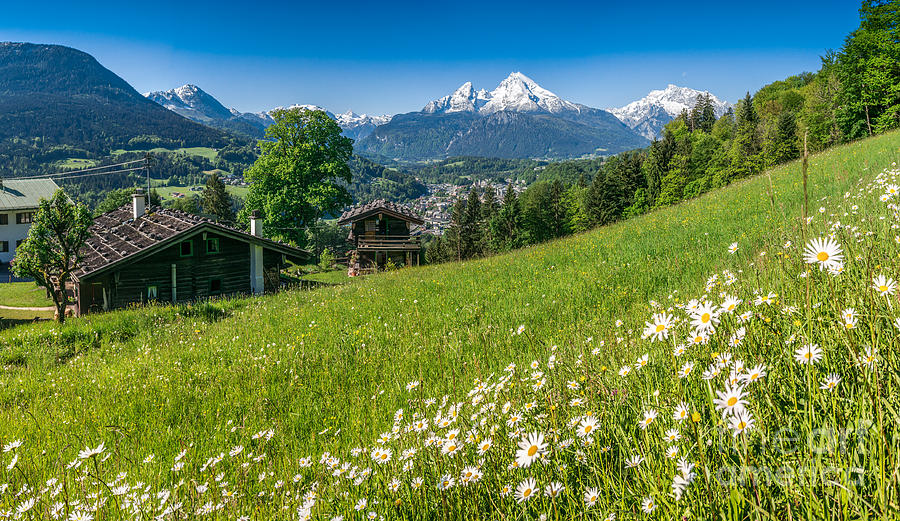 Bavarian Alps With Beautiful Flowers And Art Print Home Decor Wall Art Poster