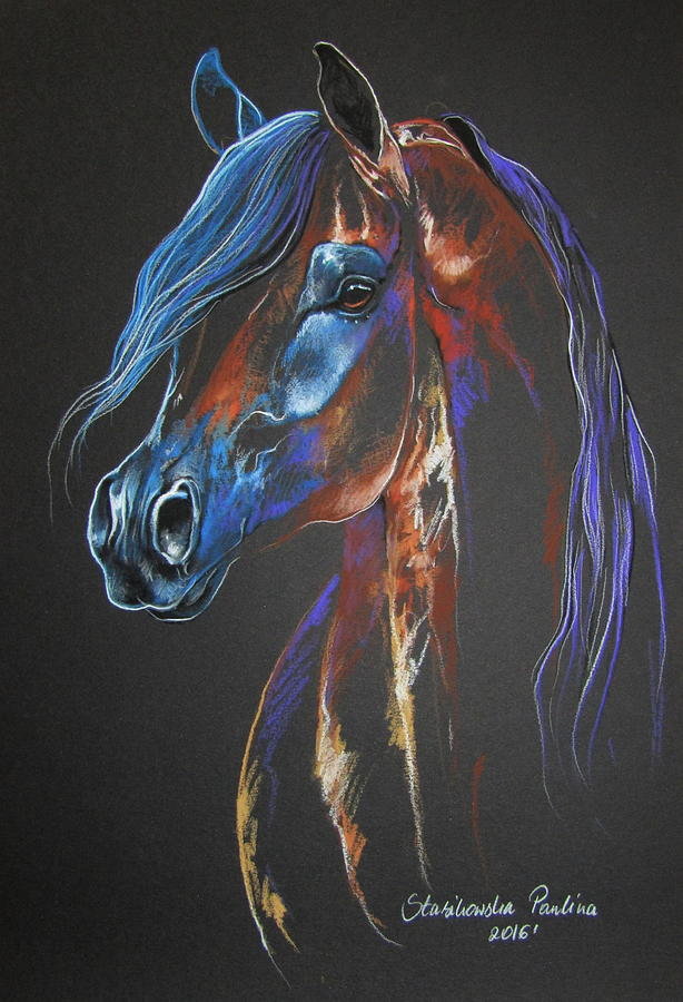 Colorful Arabian Horse Painting