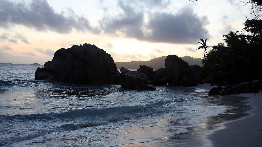 Beach Digital Art - Beach by Dorothy Binder
