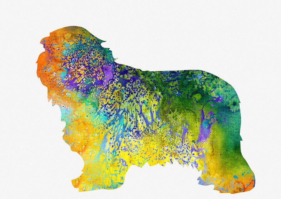 Home Decor Digital Art - Bearder Collie-colorful by Erzebet S