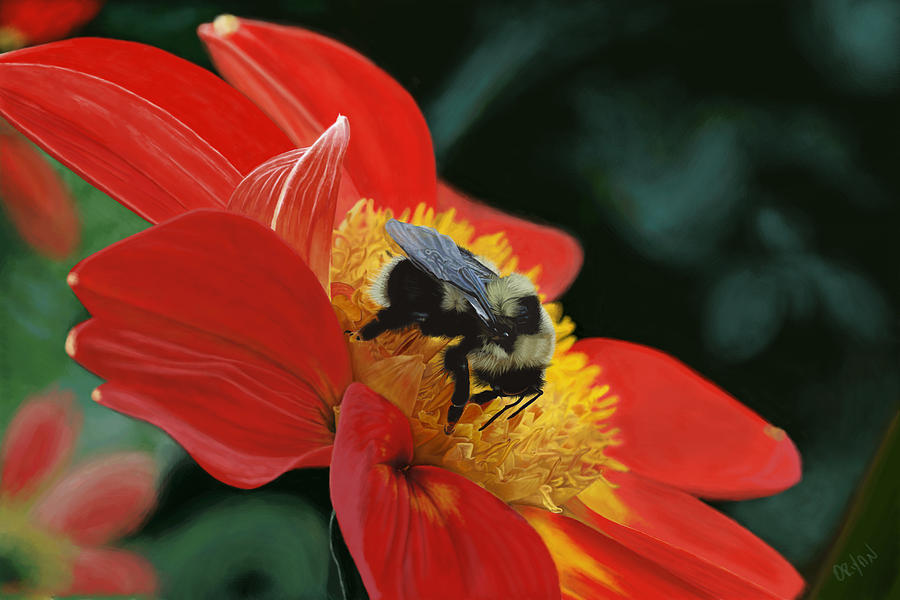 Bee Painting - Beeutiful by Kevin Phipps
