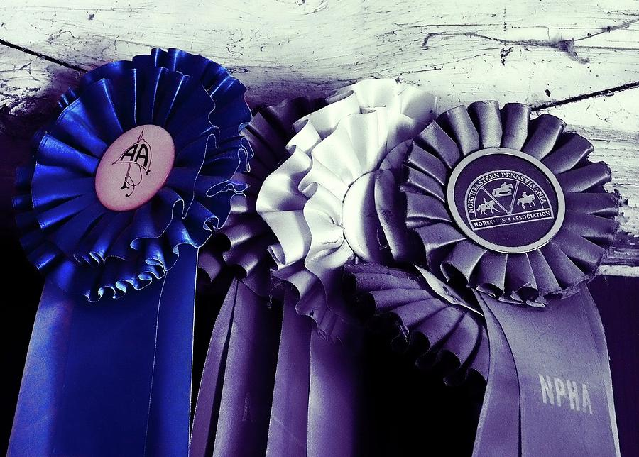 Blue Photograph - Best In Show Blue by JAMART Photography