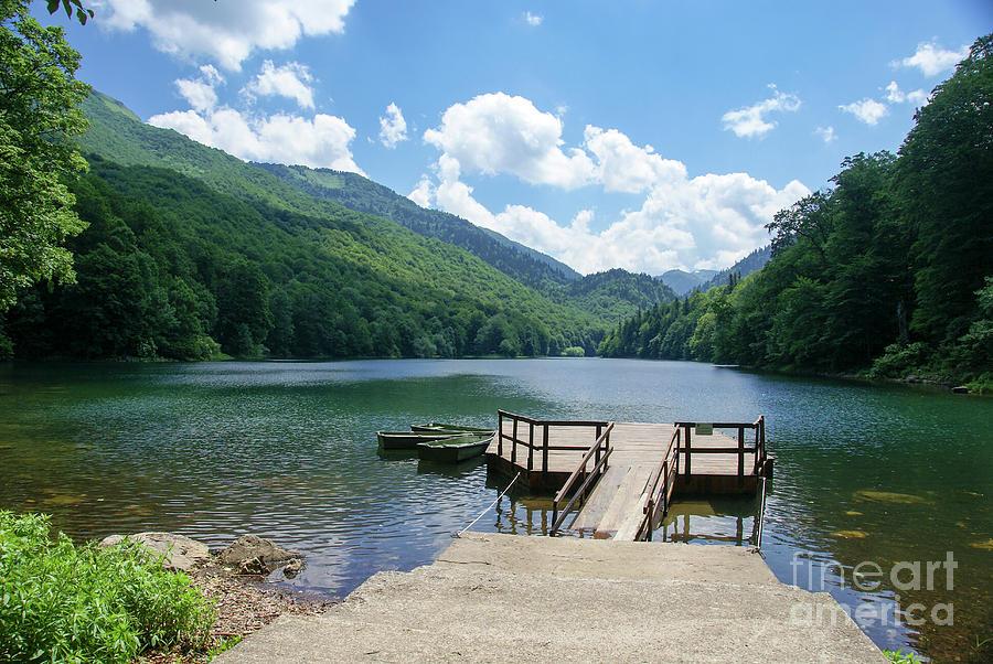 Montenegro Photograph - Biogradska Gora Forest  by Ruth Hofshi