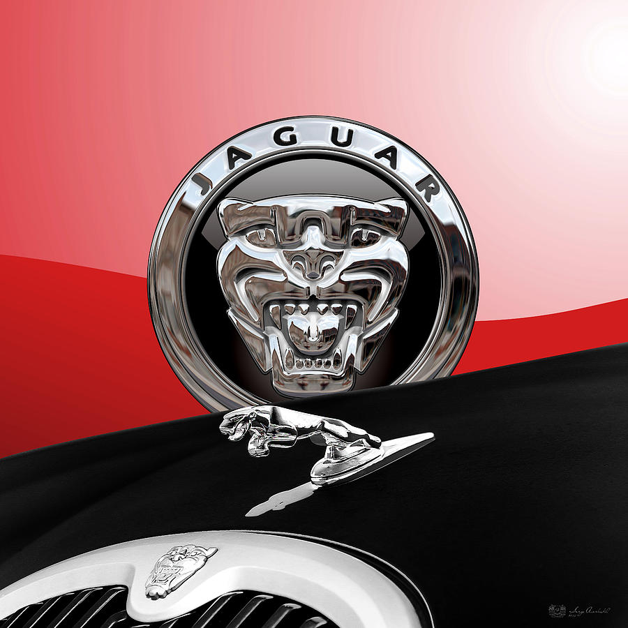 Car Photograph - Black Jaguar - Hood Ornaments and 3 D Badge on Red by Serge Averbukh