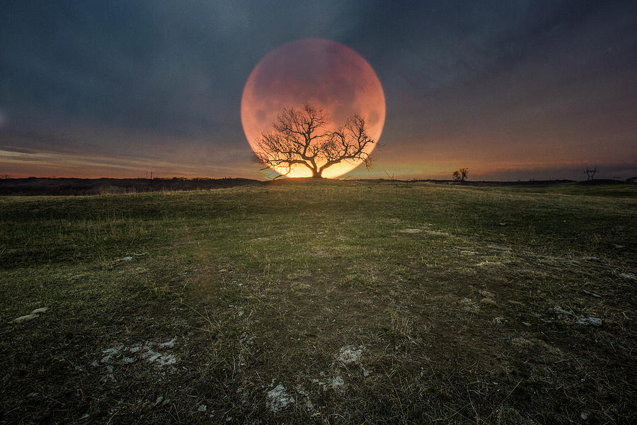 Totality Photograph - Blood Moon  by Aaron J Groen