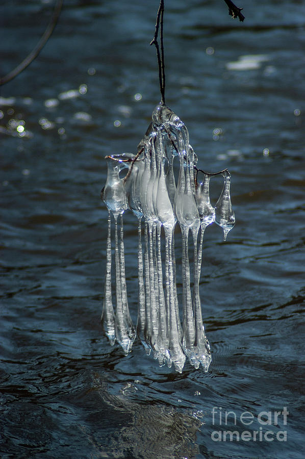 Icicles Photograph - Blue Return by Joseph Yarbrough