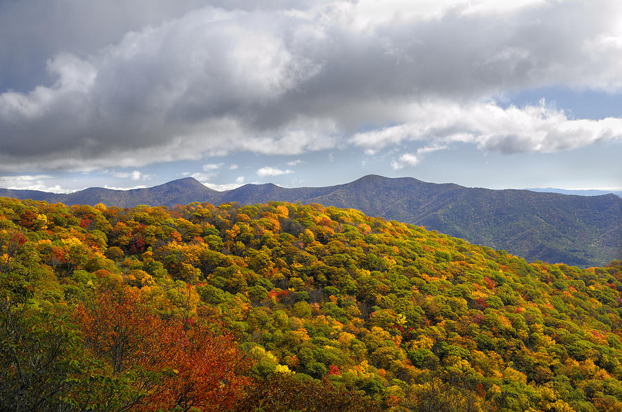 Blue Ridge Parkway Photograph - Blue Ridge Mountains In Autumn Color by Darrell Young