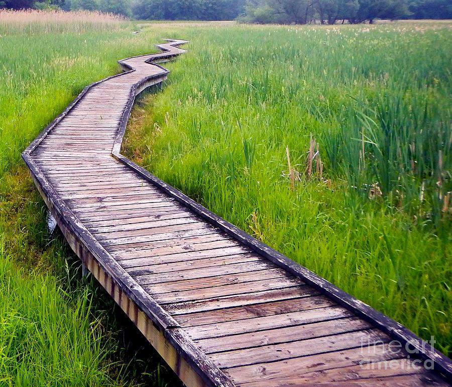 Boardwalk  by Glenn Gordon