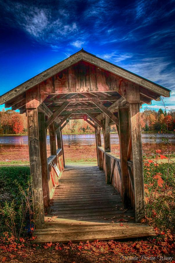 Bridge by Michaela Preston