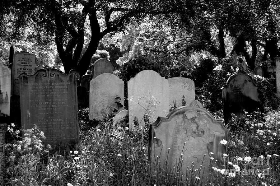 Cemetery Photograph - Brompton Cemetery London England 2009 by Wayne Higgs