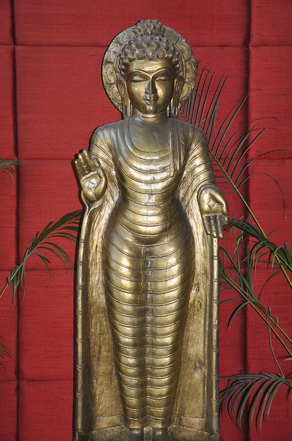 Buddha Photograph - Buddha 1 by Vijay Sharon Govender