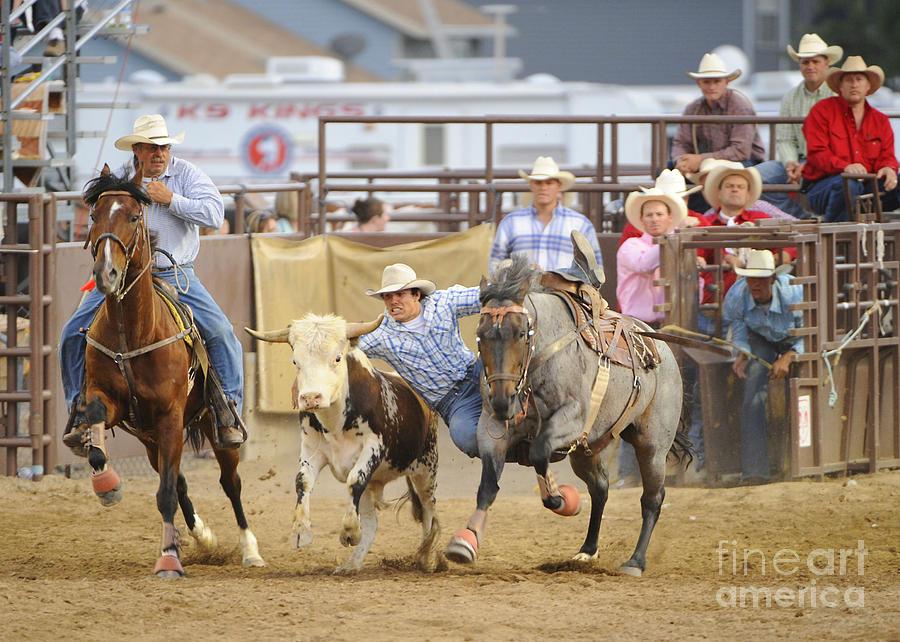 Horse Photograph - Bull Doggin by Dennis Hammer