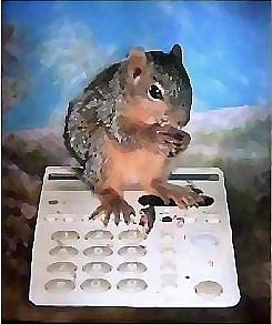 Squirrels Mixed Media - Busy Signal by Brenda Garacci