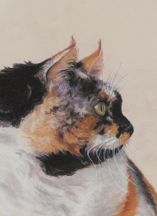 Pastels Pastel - Calico Cat by Pamela Humbargar