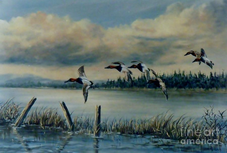 Canvasbacks Over Lake Earl Painting by Lynne Parker