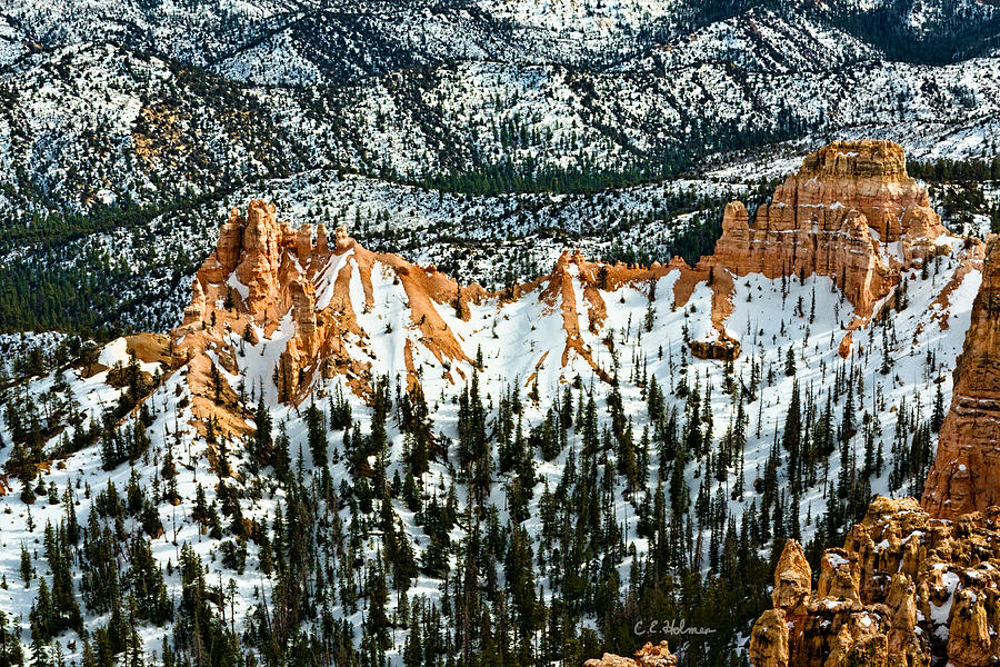 Canyon Photograph - Canyon View by Christopher Holmes