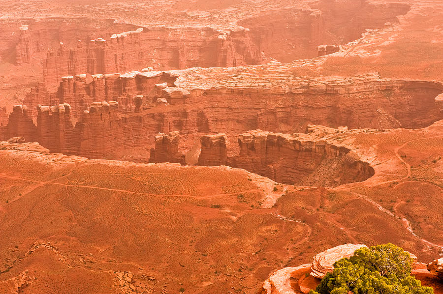 Landscape Photograph - Canyonland N.p. by Larry Gohl