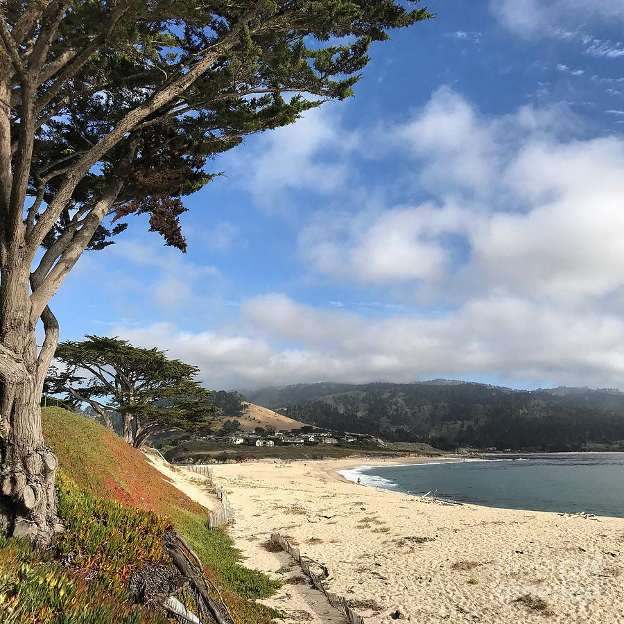 Carmel River Beach by Charlene Mitchell
