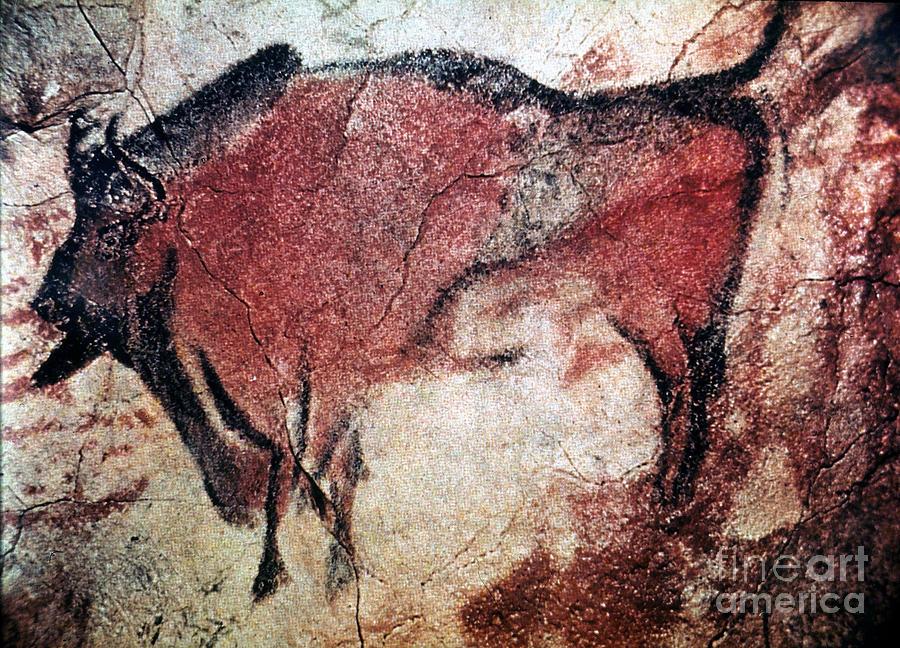 10000 Photograph - Cave Art by Granger