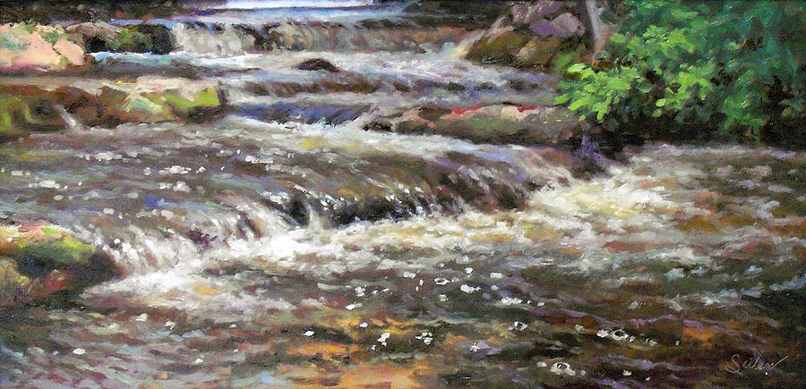Water Painting - Cedar Creek by Larry Seiler