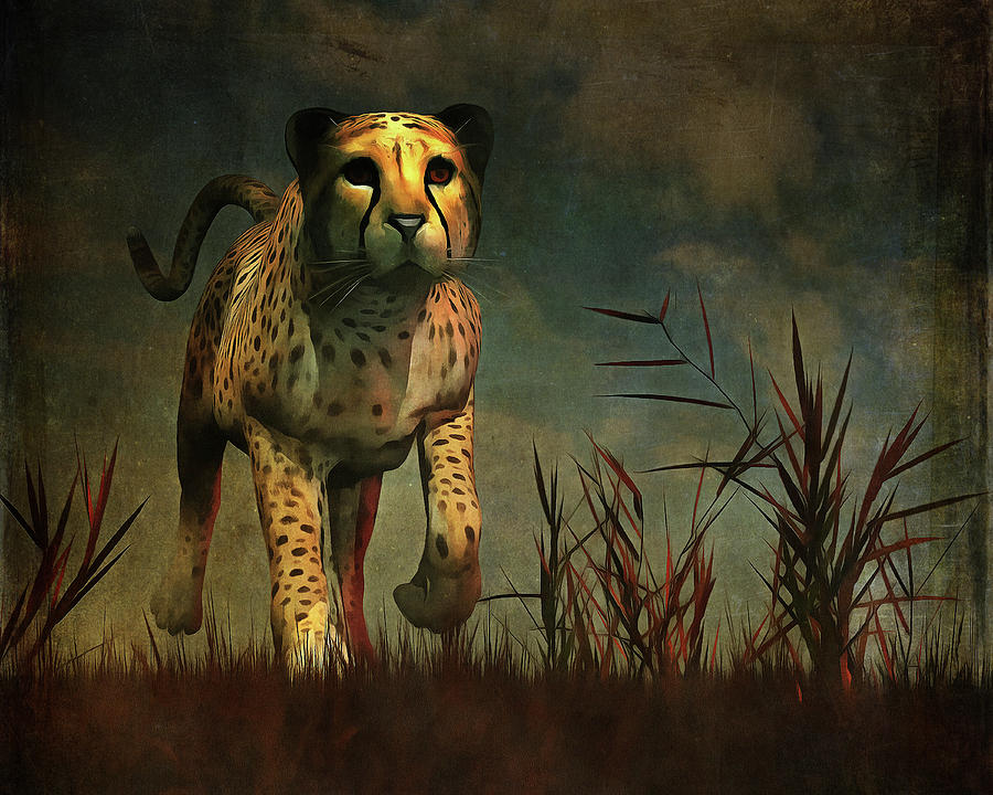 Cheetah hunting during the African night by Jan Keteleer