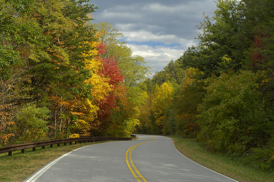 Road Photograph - Cherohala Skyway In Autumn Color by Darrell Young